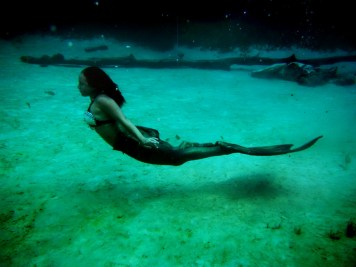 mermaid-meshpa