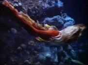 splash_too_061