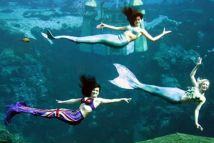 viaje-nadar-sirenas
